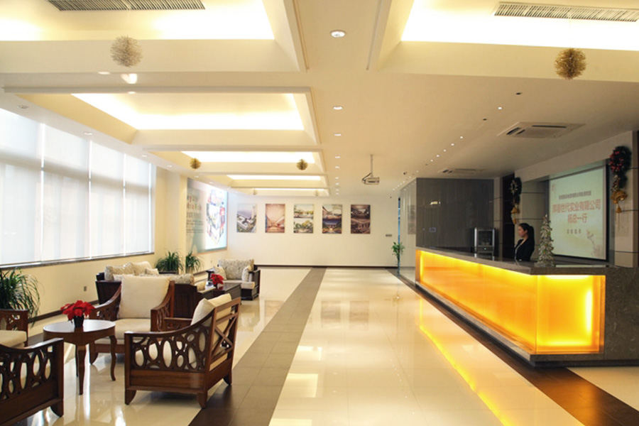 Metting-2reception-area-1-giantliftslimited